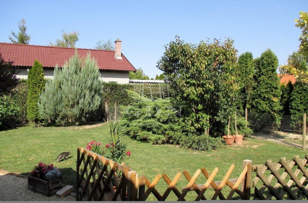 Újszegedi felújított kertes ház